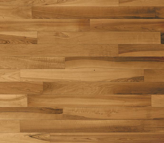 legno noce europeo